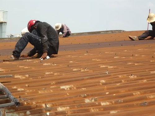 làm thế nào để ngăn ngừa mái nhà xưởng bị dột